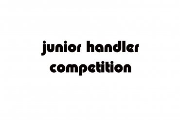 junior handler (unedited photos)