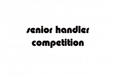 senior handler (unedited photos)