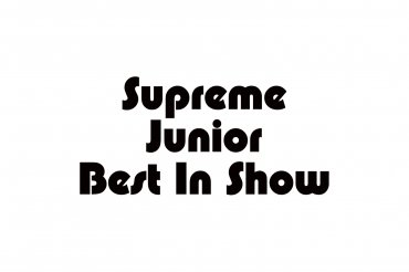 supreme junior best in show (unedited photos)
