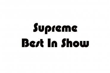 supreme best in show (unedited photos)