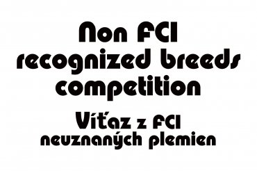 Non FCI breeds competition (unedited photos)