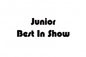 junior best in show (unedited photos)
