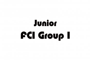 fci group 1 junior (unedited photos)
