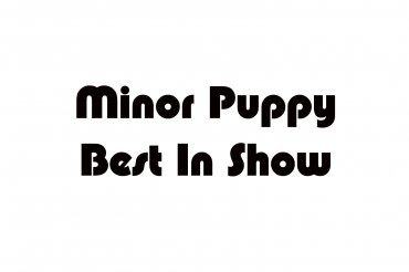 minor puppy best in show (unedited photos)