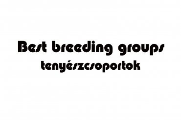best breeders groups (unedited photos)