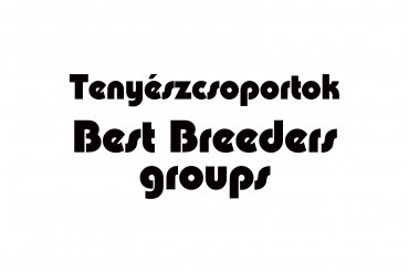 best breeders group (unedited photos)