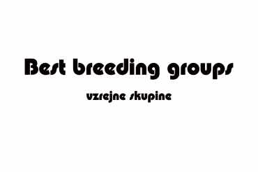 best breeding groups (unedited photos)